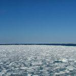 日本の魅力!オホーツク海 北海道網走市を中心に素晴らしきディアルライフを楽しむ。
